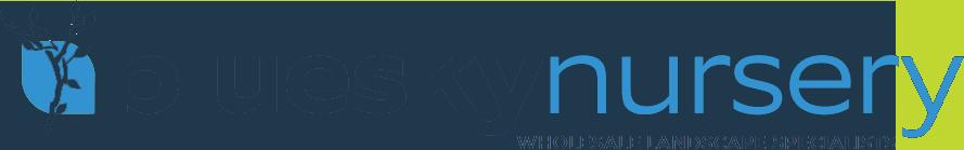 blue-sky-logo